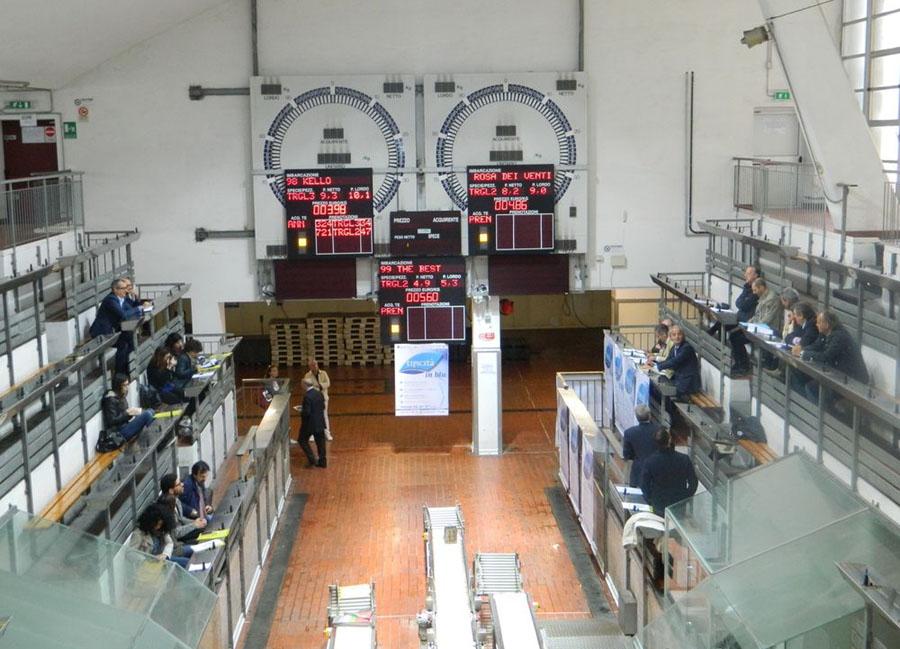 Display Mercato Ittico di Ancona